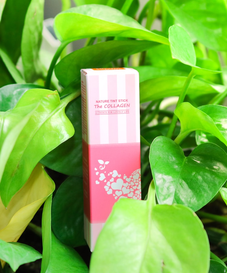 Son-Duong-Moi-co-mau-Ecosy-Nature-Tint-Stick-The-Collagen-4038.jpg